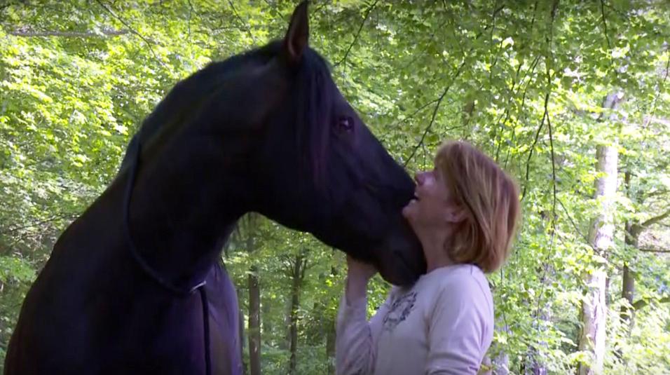 In Balans met Paarden